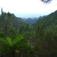 Sao Jorge widziane z lewady