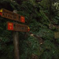 Rozdroże. Możemy wybrać drogę na szczyt Pico Ruivo, pójść szlakiem lewad do Caldeirao Verde, albo wrócić dwoma drogami do miejscowości na północnym wybrzeżu.