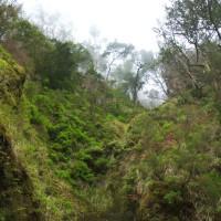Miejsce gdzie stałem było górnym brzegiem wielkiego osuwiska; pionowy las nad głową też nie budził zaufania