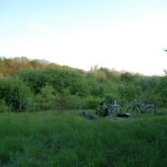 Biwakowisko, jeden z nielicznych lasów kraju.