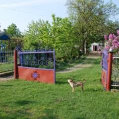 Mołdawskie kolory, zapachy i dźwięki.