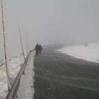 Sudety mają ciekawy mikroklimat, a zwłaszcza Pradziad, wystawiony na silne wiatry. Cóż wybitność prawie 1000 metrów zobowiązuje.