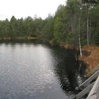 Wielkie Mchowe Jezioro.