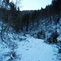 Przed najbardziej stromym odcinkiem szlaku w drodze na Cickę.
