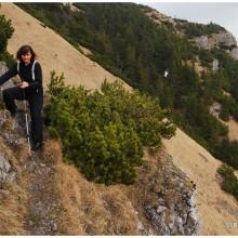 Jak to zwykle na Słowacji bywa - strome trawki w niewysokich górach.