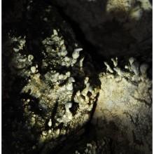 Ciekawe wielowarstwowe nacieki grzybkowe w jednej z jaskiń.