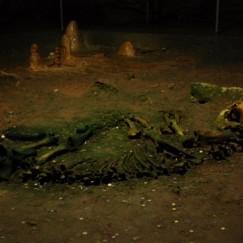 Szkielet Niedźwiedzia Jaskiniowego.