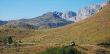 Widok na Park Narodowy Zali Gocaj.