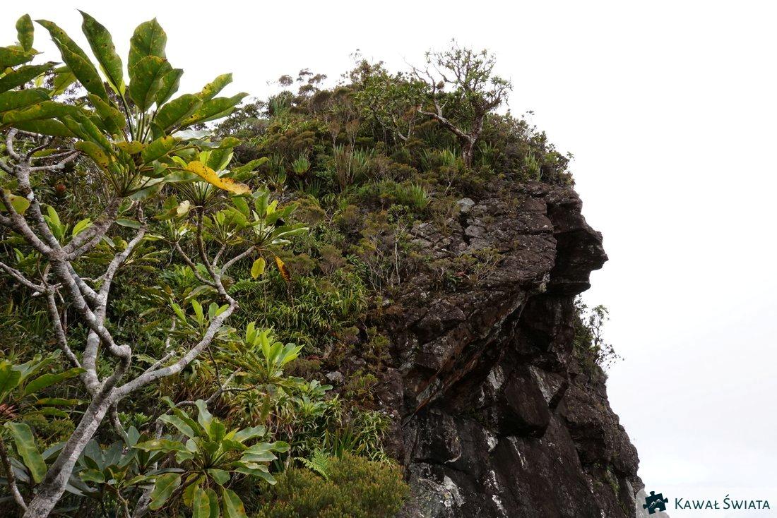 Ścieżka wiodła w górnej części tej skały mniej więcej tam gdzie jest środek zdjęcia.