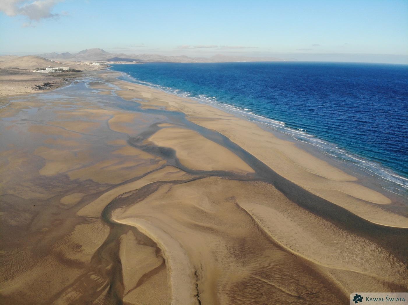 Piaszczyste wybrzeża wyspy są ostoją dla ptaków brodzących, zwłaszcza, że różnice poziomu morza potrafią sięgać 1,5 metra.