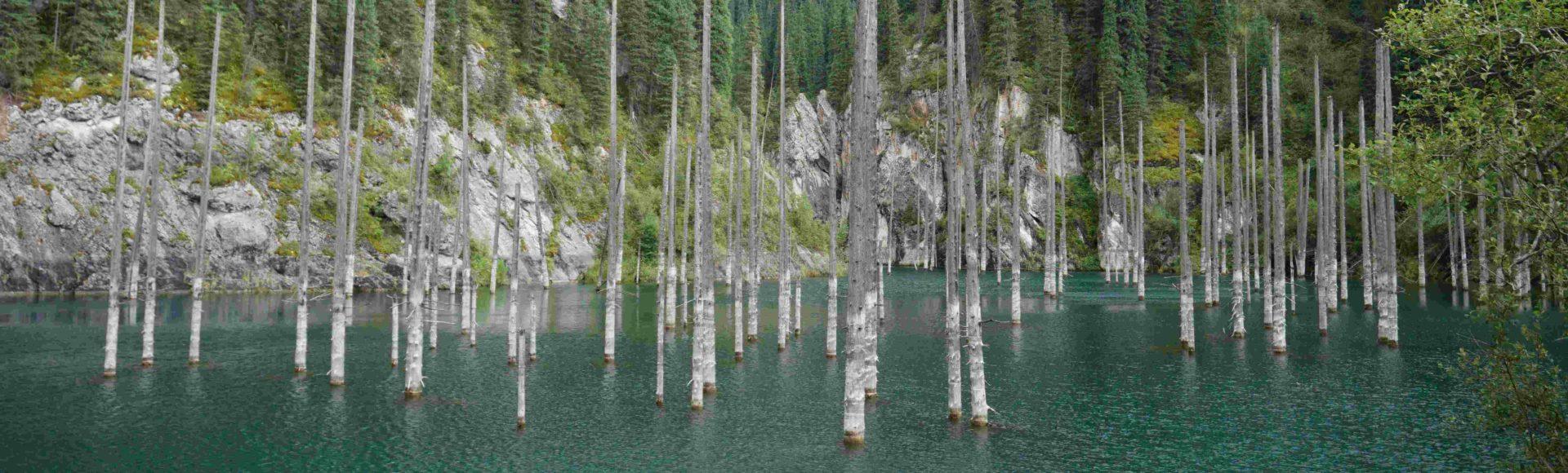 Dyżurny landszaft Kazachstanu czyli jezioro Kaindy   озеро Каинды